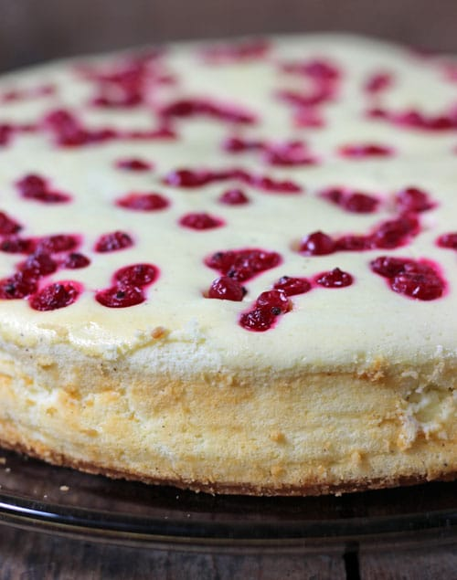 Cheesecake mit Johannisbeeren