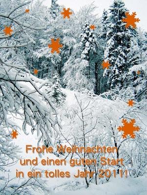 Frohe Weihnachten und einen guten Start ins Jahr 2011!
