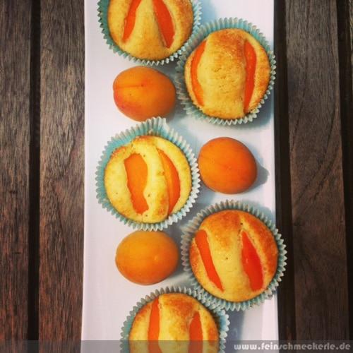 kleine aprikosen küchlein muffins