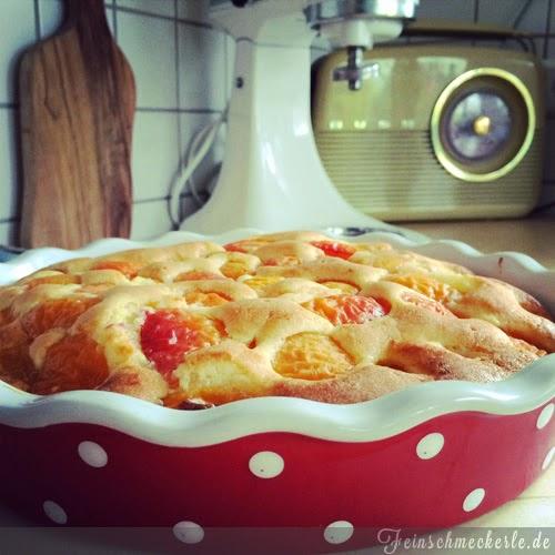 einfacher Aprikosen Kuchen
