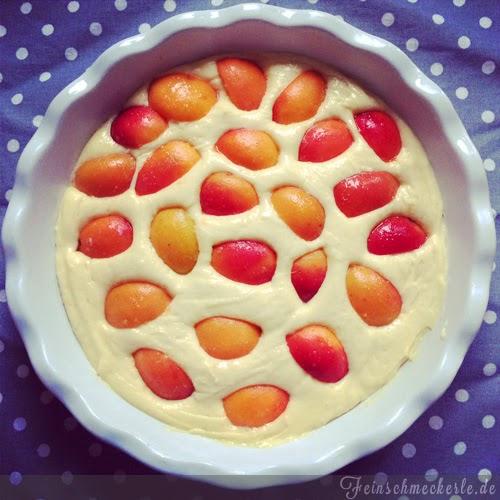 rezept Aprikosen Kuchen
