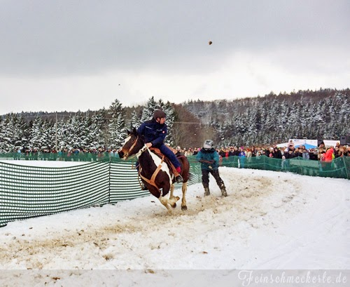 schwäbische Alb skijöring